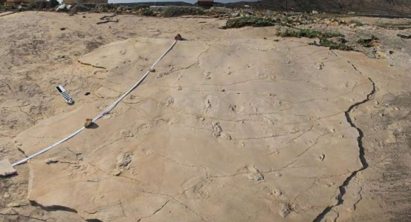 5.7 million years old human-like footprints found in Greece