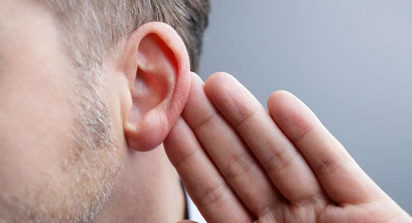 CDK2 inhibitors: New drugs may help prevent hearing loss