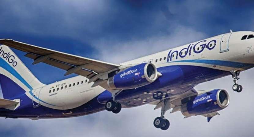 IndiGo deplanes passenger for complaining of mosquitoes, Suresh Prabhu orders probe