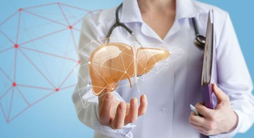 What is Non-alcoholic fatty liver disease? Know the symptoms, causes, treatment and more