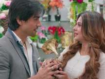 Bepannah latest promo: Jennifer Winget, Harshad Chopda as a romantic couple