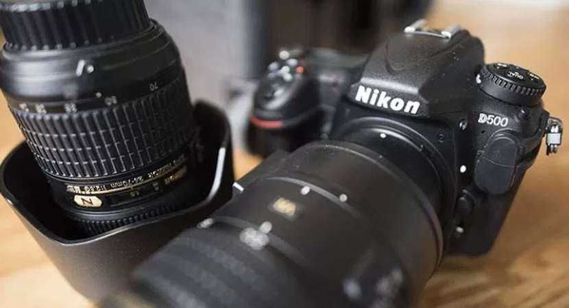 New Nikon camera to enhance wildlife photography experience