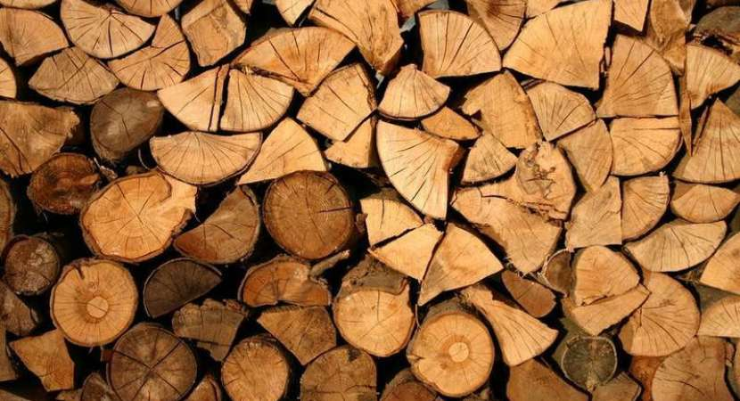 Chinese researchers develop new way to make artificial wood