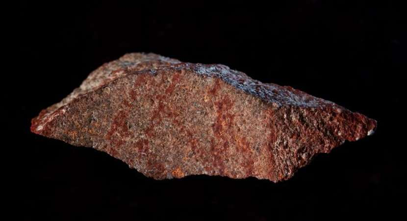 World's oldest hashtag unearthed in South Africa
